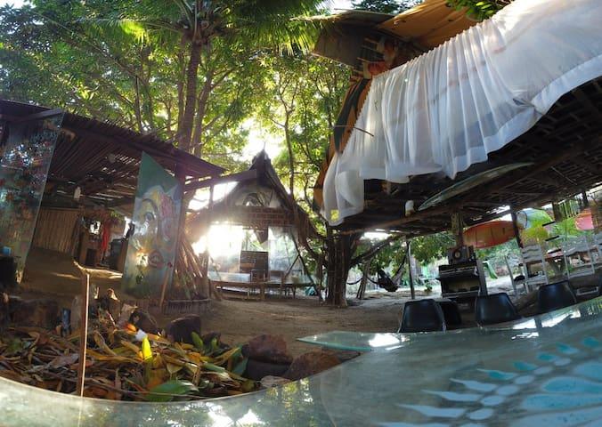 Casa na arvore - Natureza, mangue e praia