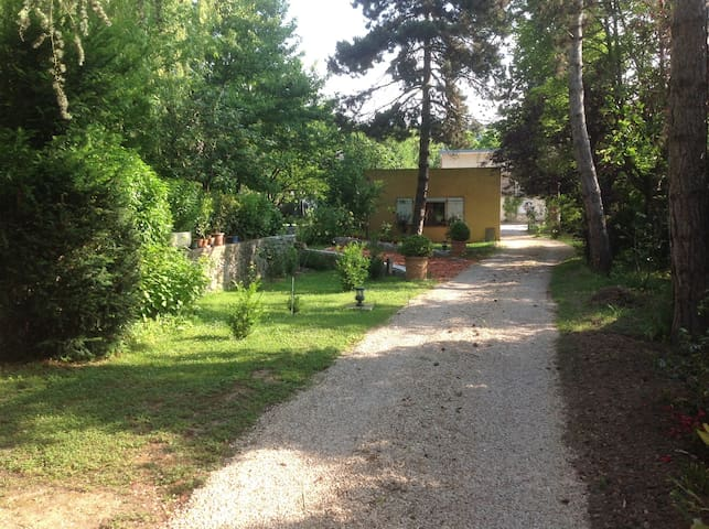 Studio fond de jardin - Palaiseau - Flat