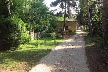 Studio fond de jardin - Palaiseau - อพาร์ทเมนท์