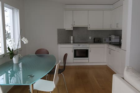 Quiet apartment close to nature - Leilighet