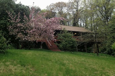 Cherry Blossom Cabin, DC! - Cheverly  - Dom