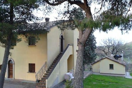 Santamarcellina's apartment