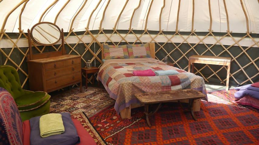 High Nature Yurt Camp - Medium Yurt