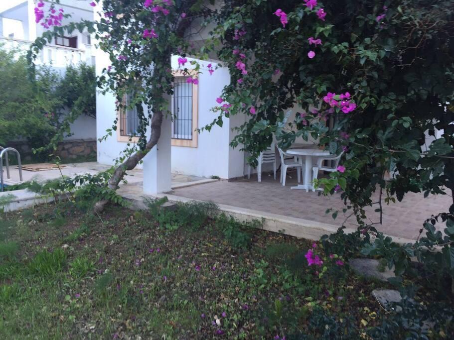 Evin ön bahçesi