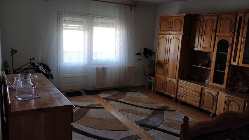 O oaza de liniste in Alba Iulia - dormitor 1