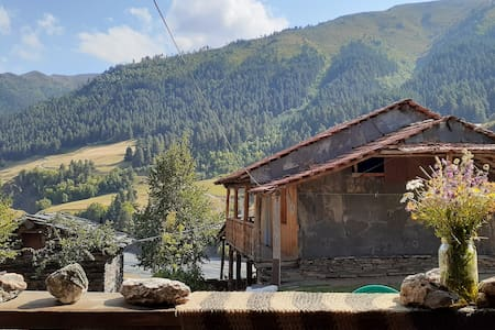 Rent a room and start exploring Tusheti