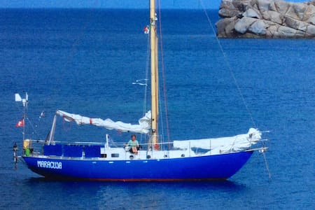 Segelschiff als Unterkunft - Portoferraio - Barco
