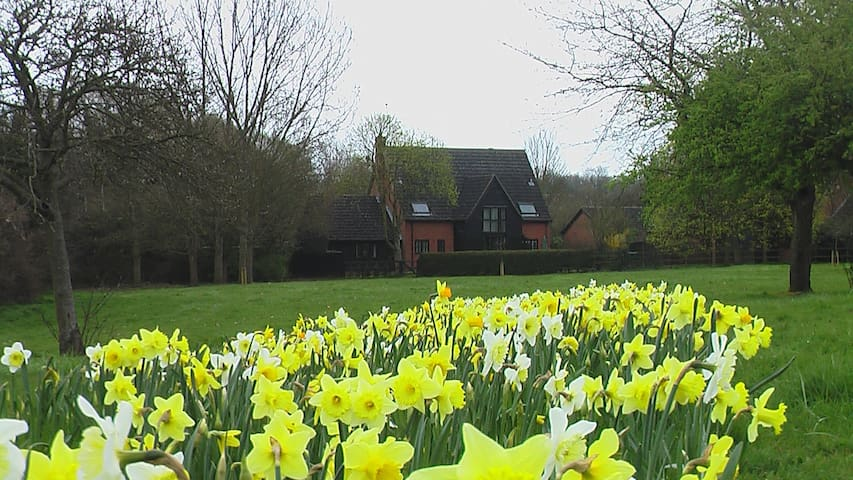 Springbank Bed and Breakfast, Haverhill, Suffolk