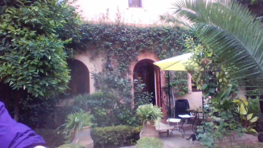 Gartenansicht Unser Riad, arabische Villa