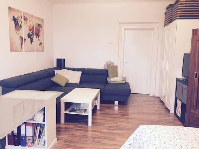 central-modern 30m2 room + balc., wifi