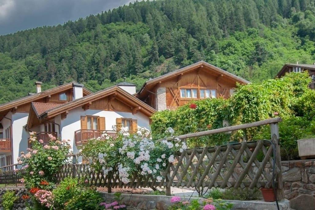 Appartamenti vacanze val di sole bilo con giardino case for Appartamenti amsterdam vacanze