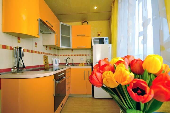 Двухкомнатные апартаменты на Холодной горе