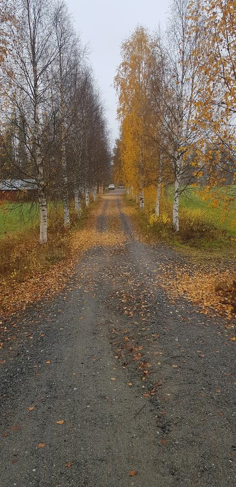 En röd liten stuga I Norrbottenspärla.