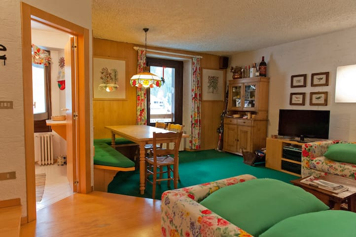 Fantastico appartamento in posizione unica! - Santa Caterina - Apartamento