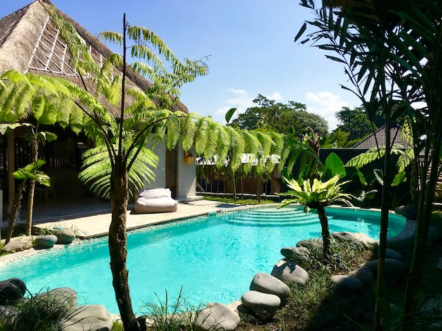 Architect Designed Studios/Orchid 1 - Ubud