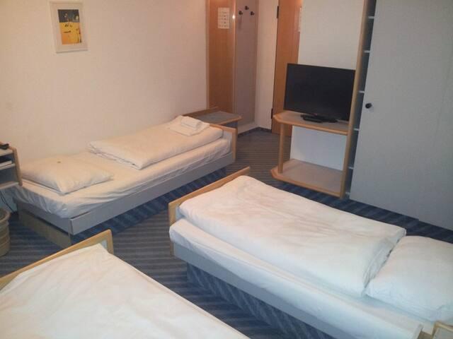 Dreibettzimmer Standard im Löwen Hotel Arian