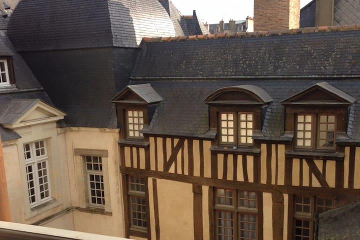 Petit Palais - Quartier historique de Rennes