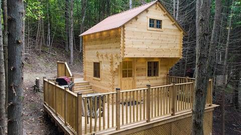 Pine River Bunkies: soví hnízdo off mřížka kabina