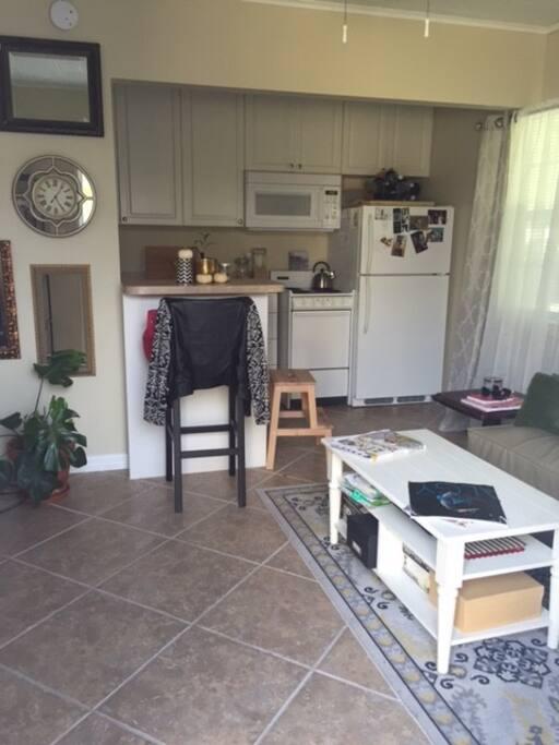 Davis Island Florida Apartments For Rent