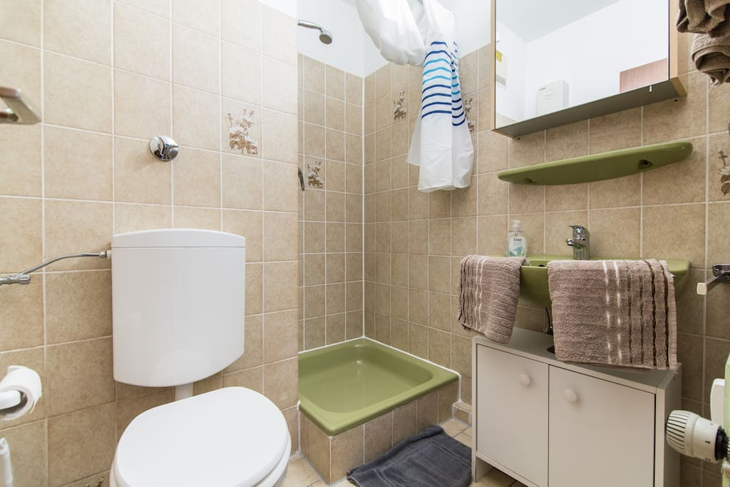 Shower room/ Cuarto de baño con ducha