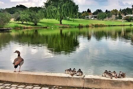 Cedar Lakes Lifestyle Estate - Self Catering - Sandton