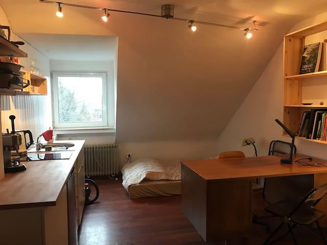little studio / 1-Zimmer-Wohnung in Cologne