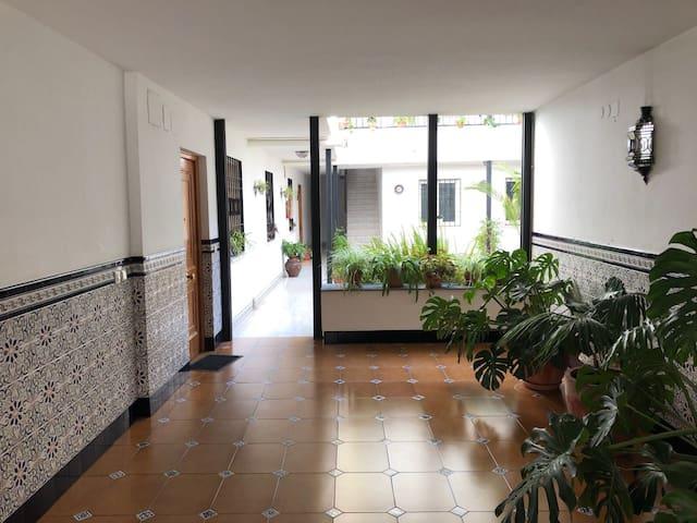 Centro Córdoba, al lado de Ayuntamiento