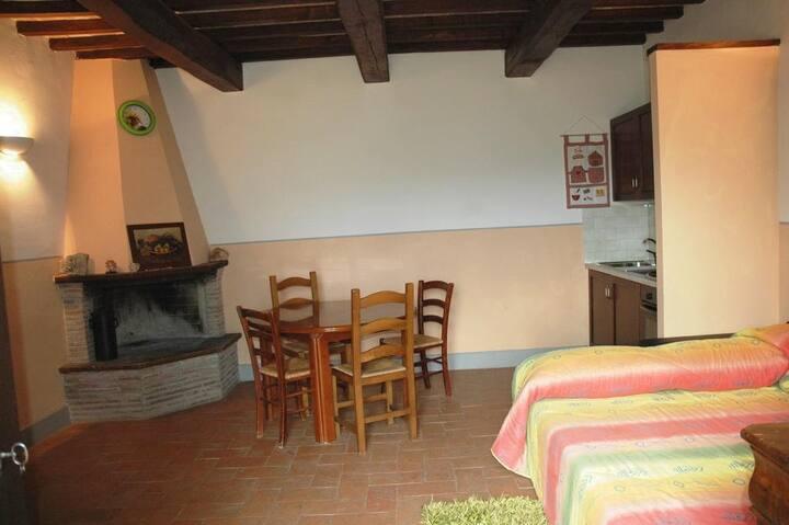 Appartamento 1 con cucina e camino