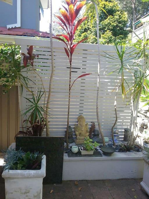 Peaceful corner of garden