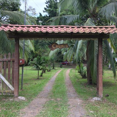 Casa Chumi's - Cahuita - บ้าน
