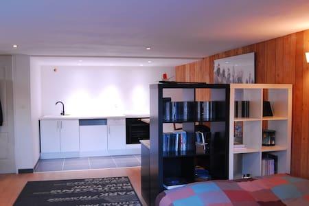 Studio de 35m2 - Saint-Didier-au-Mont-d'Or
