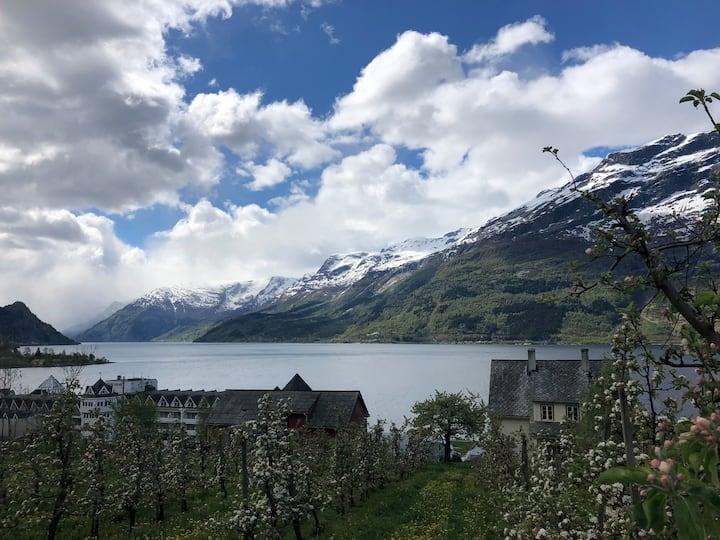 Mønsgarden fruktgård i Hardanger