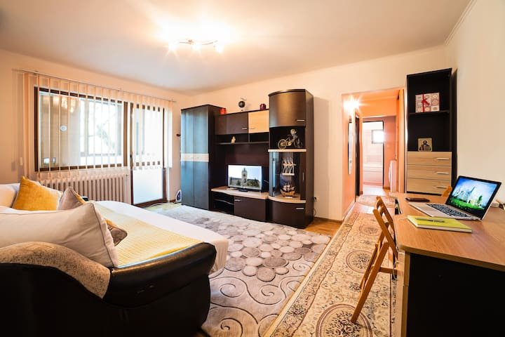 Comfortable 3 bedroom apartment in a quite area - Iași