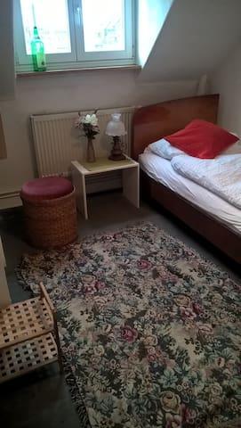 Kleines Zuhause in Mainz