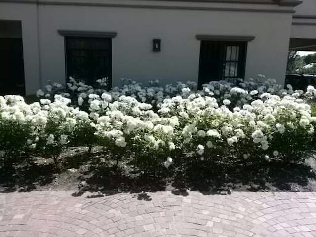 Casa Colonial .Habitacion con bano privado - Tandil - Casa
