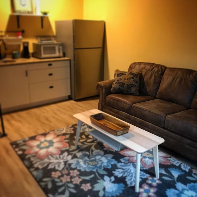 Living room and kitchenette complete with very comfortable, queen size sofa bed.