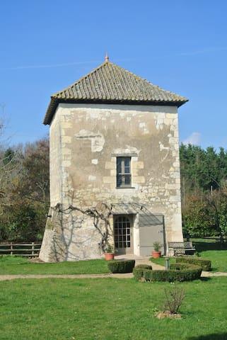 La Tour du Grand Boust - Longué-Jumelles - บ้าน