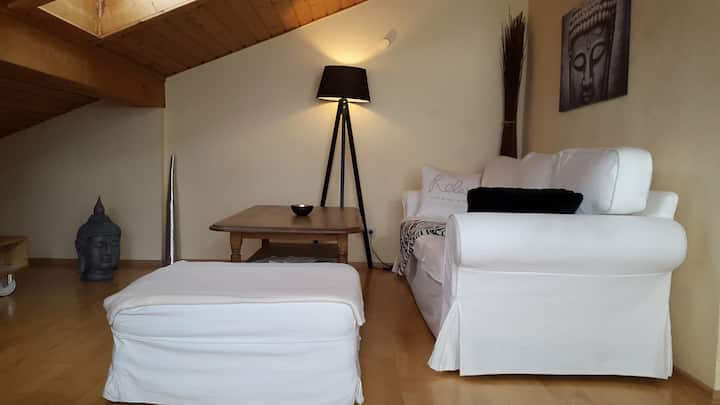 Schönes 40m2 Gäste Appartement Bad ruhig City  FH