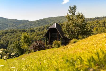 Grandpa's lodge in peaceful area