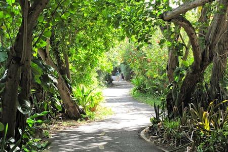 Air-Conditioned! Garden Studio@Sunset Beach - Haleiwa