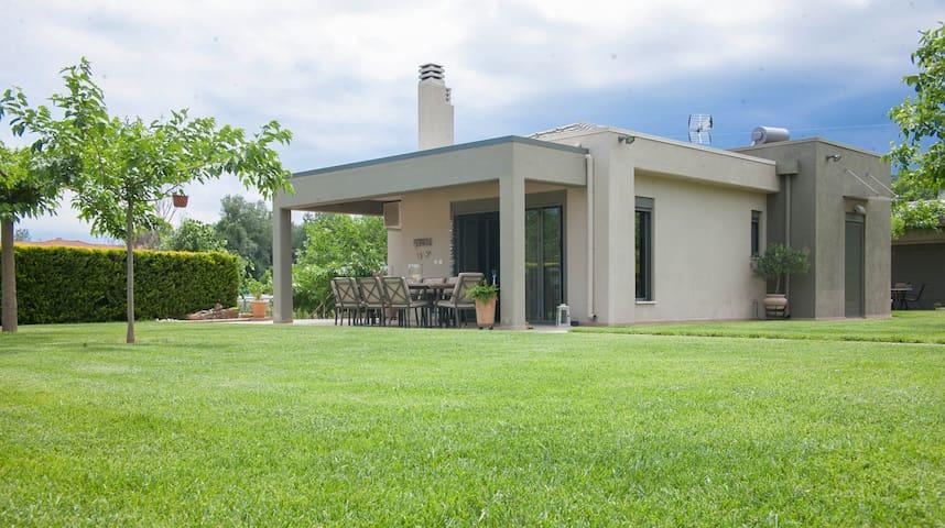 Luxury Villa 1