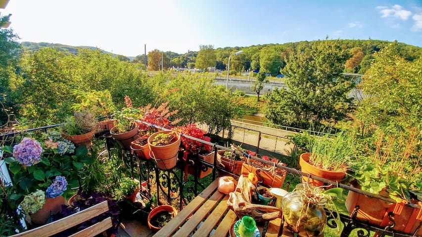 Helle große Wohnung im Grünen mit Balkon