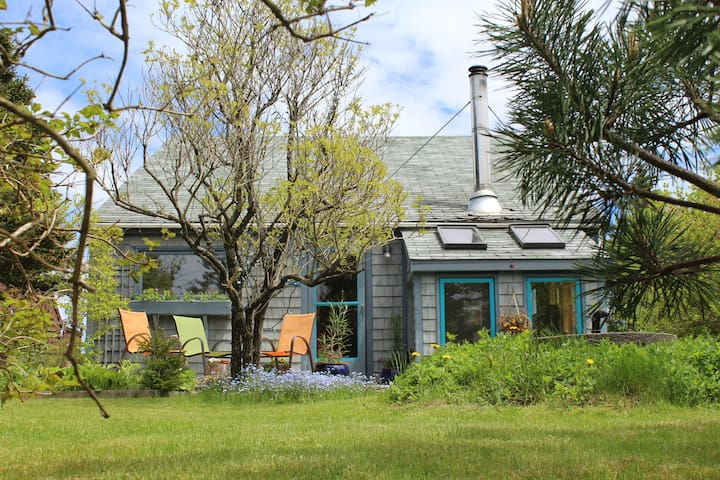 Surf studio on fishing village isle - Head of Chezzetcook - Bed & Breakfast