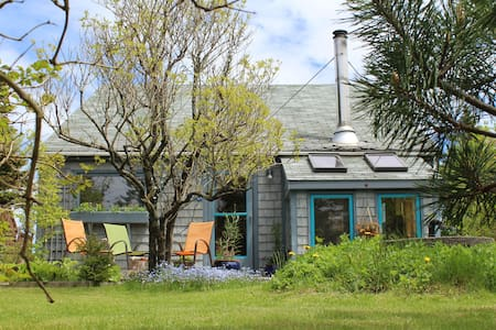 Surf studio on fishing village isle - Head of Chezzetcook - B&B