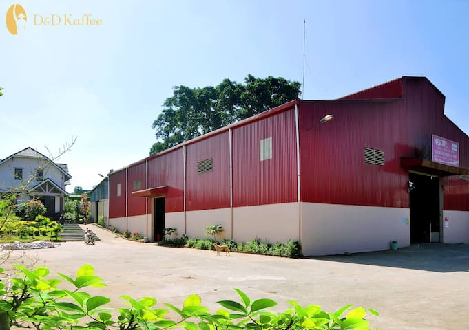 Coffee Farm and Factory Homestay in Lam Dong