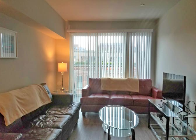 Luxurious 2BR Vacations Rental  in Seattle