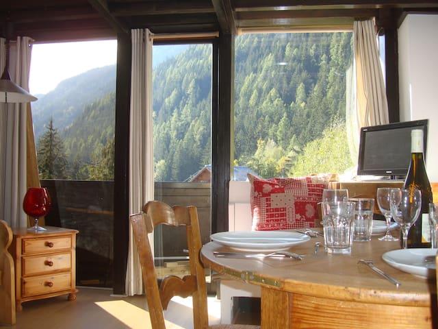 Appart 5 places à Argentière Chamonix ski au pieds - Chamonix - Wohnung