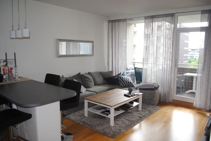 Attractive and modern appartement with a balcony - Oslo - Apartament