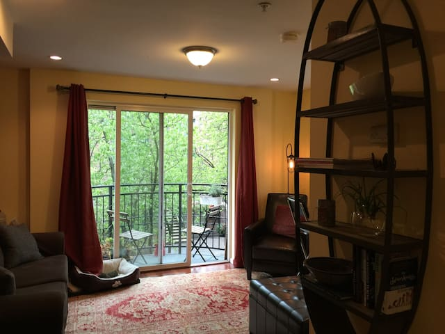 Cozy Belltown oasis with Space Needle view