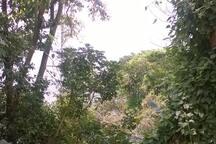 Ilha Porchat, com vista, garagem e Wi-Fi